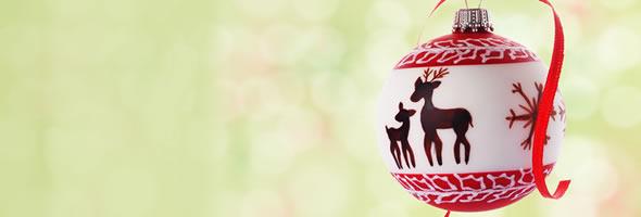 Julerbjudande